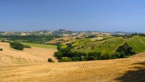 Sommarlandskap nära Monterubbiano Fermo, gränser royaltyfri foto