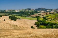 Sommarlandskap nära Monterubbiano Fermo, gränser arkivbilder