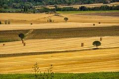 Sommarlandskap nära Perugia Royaltyfria Foton