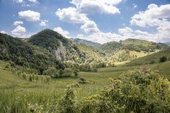Sommarlandskap på berget Arkivbilder