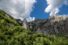Sommarlandskap på berget Arkivfoton
