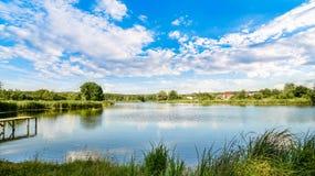 Sommarlandskap på dammet Royaltyfria Bilder