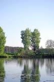 Sommarlandskap på den tysta sjön Royaltyfri Fotografi