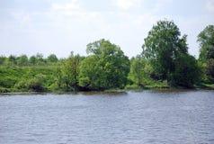 Sommarlandskap på den tysta sjön Royaltyfria Bilder