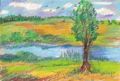 Sommarlandskap, träd, flod och fåglar Arkivfoto