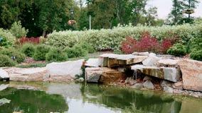 Sommarlandskapdesign: konstgjord vattenfall med dammet och växter och blommor stock video