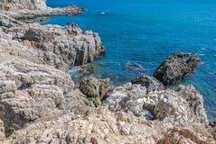 Sommarlandskapet av den steniga stranden Fotografering för Bildbyråer