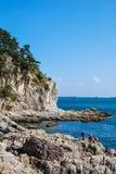 Sommarlandskapet av den steniga stranden Royaltyfri Fotografi