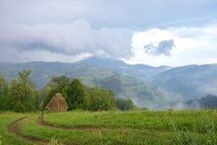 Sommarlandskapet med dimma över bergby grön ängväg Arkivbild
