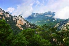 Sommarlandskapet med stenigt och sörjer träd Arkivfoto