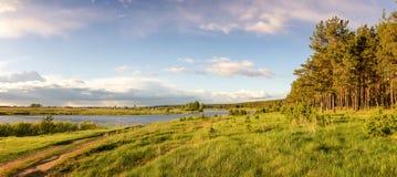 sommarlandskapet på den Ural flodbanken med sörjer träd, Ryssland, Arkivfoton