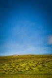 Sommarlikt skjul på ett berg i Skottland Royaltyfri Fotografi