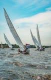 Sommarlynne: vit seglar mot den blåa himlen Fotografering för Bildbyråer