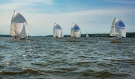 Sommarlynne: vit seglar mot den blåa himlen Royaltyfri Foto