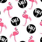 Sommarmodell med gulliga flamingo- och försäljningsklistermärkear på vit bakgrund Prydnad för textil och inpackning Royaltyfri Fotografi