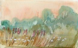 Sommarmorgonfält Arkivfoto