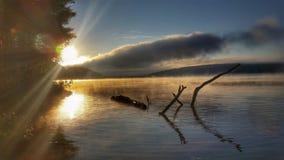 Sommarmorgonsoluppgång royaltyfria foton