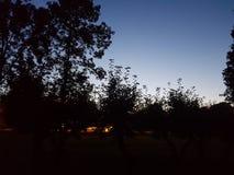Sommarnatten Arkivfoton