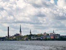 Sommarpanorama av Tallinn, Estland Royaltyfri Foto