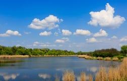 Sommarplats på sjön Arkivfoto