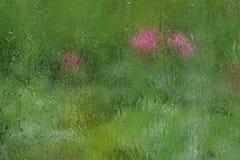 sommarregn tappar på textur för bakgrund för fönsterexponeringsglas Royaltyfria Foton