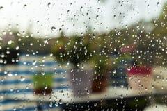 Sommarregndroppar Arkivbilder