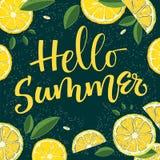 Sommars?song - Hello sommar - f?rgrik handwritekalligrafi stock illustrationer