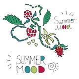 Sommarsammansättning med hallon på vit bakgrund Arkivfoto