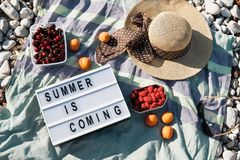 Sommarsammansättning med hatten, bäranSummersammansättning med L Fotografering för Bildbyråer