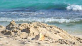 Sommarsandstrand med havvågor Sandhög på stranden Sandy Seashore lager videofilmer
