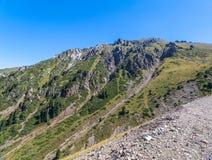Sommarsikt av bergmaxima av Alatauen Medeo i Alma-ATA i Kasakhstan royaltyfria foton