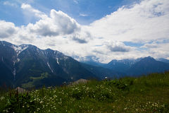 Sommarsikt i de schweiziska fjällängarna Royaltyfri Fotografi