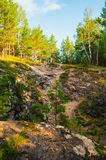 Sommarskoglandskapet - marmorera h?jdpunkten som ?r brant n?ra den Sugomak grottan i sydliga Urals, Ryssland fotografering för bildbyråer