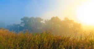 sommarsoluppgång Arkivfoto
