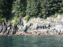 Sommartid i den Valdez fjärden Arkivbilder