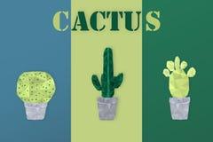 Sommartid - kaktus Royaltyfria Foton