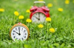 Sommartid - klockor och blommor i gräset Arkivbilder