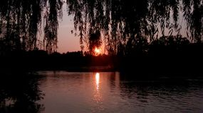 Sommartid på en Minnesota afton Royaltyfria Foton