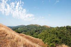 Sommartidlandskap i de Malvern kullarna av den engelska bygden av skogen av dekanen Arkivfoton