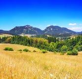 Sommartidsikt av ängen med Chocsky kullar, Pravnac och Lomy arkivfoton