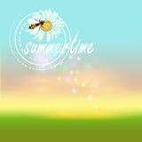 Sommartidvektorbakgrund Royaltyfri Fotografi