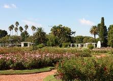 Staden landskap i en sommarträdgård av ro Royaltyfri Fotografi