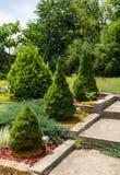 Sommarträdgårddesign Arkivfoton