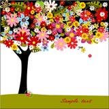 sommartree Arkivfoton