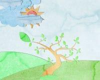 sommartree Arkivbild