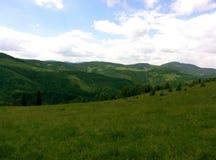Sommarukrainare Carpathians Royaltyfri Fotografi