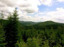 Sommarukrainare Carpathians Royaltyfria Foton
