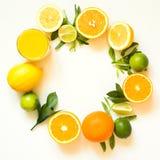 Sommaruppsättning av tropiska frukter, citron, apelsin och gräsplansidor på vit baner arkivfoto