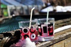 Sommarväder Bra drink enjoying Partihus Speciala coctails royaltyfri bild