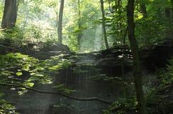 Sommarvattenfall i skogen Arkivfoton